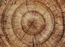 Durmiente de madera Imagen de archivo