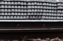 Durmientes ferroviarios en filas Foto de archivo libre de regalías