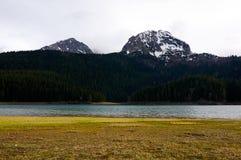 durmitor montenegro国家公园 图库摄影