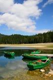 durmitor montenegro国家公园 库存照片