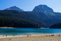 Paradise views of the national park Durmitor in Montenegro. Turquoise water of the lake, pine forest and mountains. Stunning backg stock photography