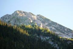 durmitor Montenegro park narodowy Zdjęcie Royalty Free