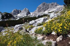 durmitor Montenegro park narodowy Obraz Royalty Free