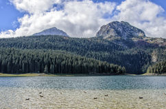 Durmitor, Montenegro Royalty Free Stock Photography