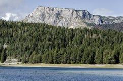 Durmitor, Montenegro Royalty Free Stock Image