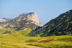 Durmitor National Park  Montenegro Stock Images