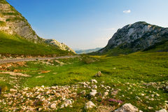 Durmitor National Park  Montenegro Royalty Free Stock Photography