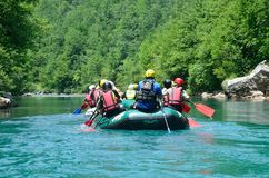 Durmitor nationalpark, Montenegro, Juni, 15, 2015 Montenegro plats: Folk som rafting på den Tara floden Royaltyfri Foto