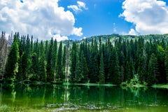 Durmitor område på Montenegro Royaltyfria Bilder