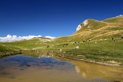 Durmitor-Ring Stockbilder