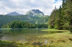 Durmitor teren, Montenegro, Czarny jezioro w lecie Zdjęcia Royalty Free