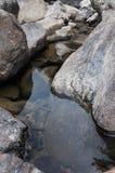 Duro y mojado Foto de archivo libre de regalías