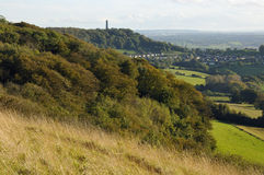 Dursley Woods and Tyndale Monument Royalty Free Stock Photo
