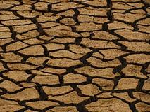 Durstiges Land Stockbilder