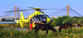Durtch trauma helicopter. Helicopter the Lifeliner 3 in Holland Royalty Free Stock Images