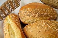 Durum wheat bred rolls Stock Image