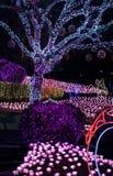 Duryu Park Starry Night Illuminations night in Daegu South Korea Royalty Free Stock Photography