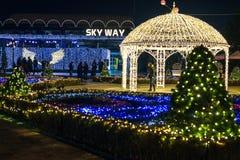 Duryu Park Starry Night Illuminations night in Daegu South Korea Royalty Free Stock Image