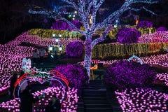 Duryu Park Starry Night Illuminations night in Daegu South Korea Royalty Free Stock Photo