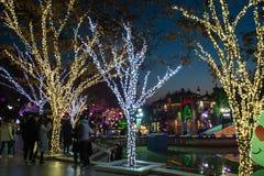 Duryu Park Starry Night Illuminations night in Daegu South Korea Stock Photography