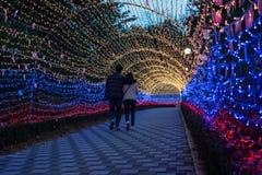 Duryu-Park-sternenklare Nachtbeleuchtungsnacht in Daegu Südkorea Lizenzfreie Stockfotos