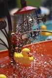 duscha för andgummi Arkivbilder