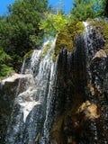 duscha vattenfallet Royaltyfria Bilder
