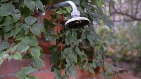 Dusche im Freien mit Blättern stock video footage