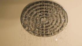 Duschwasserfließen stock video