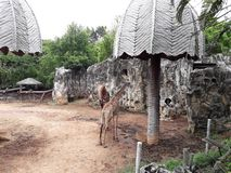 Dusit zoo lub powszechnie znać jako Khao łomot Wana zdjęcia stock