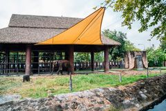 Dusitdierentuin in Bangkok, Thailand royalty-vrije stock afbeelding