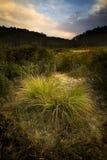 dusk κοιλάδα στοκ εικόνα