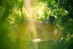 dusk κορίτσι βλέμματος Στοκ Εικόνες