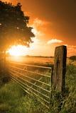 dusk πεδία στοκ φωτογραφία με δικαίωμα ελεύθερης χρήσης