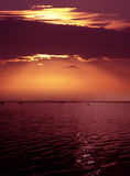 dusk ροζ στοκ εικόνα με δικαίωμα ελεύθερης χρήσης