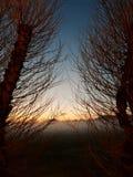 dusk fotografia stock