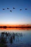 dusk λίμνη Στοκ Εικόνες