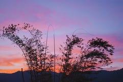 The dusk Royalty Free Stock Photography