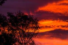 dusk Στοκ φωτογραφία με δικαίωμα ελεύθερης χρήσης