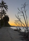 Dusk, Cardwell, Queensland Stock Images
