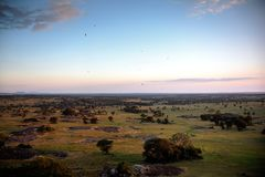 Dramatic sunset lighting over the Serengeti savannah from an overlook stock image