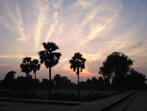 Dusk evening in Sikandra Agra. Dusk evening with palm trees at Sikandra Royalty Free Stock Photography