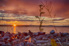 Dusk in Finland. Dusk after a heavy thunderstorm in northern Finland Stock Images