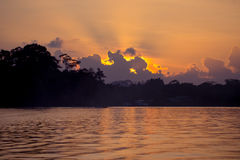 Dusk at Kinabatangan river. Kinabatangan river in the evening, Sabah, Borneo, Malaysia Royalty Free Stock Image