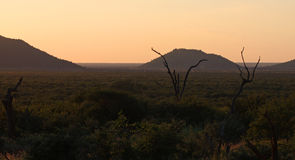 Dusk Over Africa. Africa landscape in the dawn light Stock Photography
