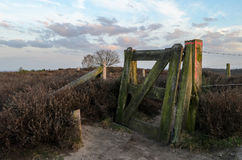 Dusk over heathland area in holland looking past fence Royalty Free Stock Images