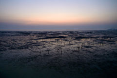 Dusk. Photo taken in the evening near Mangrove forest at Bangpu, Thailand Royalty Free Stock Photo