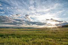 Dusk on the Prairie. Sunburst from the setting sun over a green meadow Royalty Free Stock Image