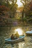 Dusk and rowing boat. Shooting location :  Musashino-shi, Tokyo royalty free stock images
