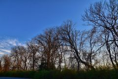 Dusk Sunset views through winter tree branches by Opryland along the Shelby Bottoms Greenway and Natural Area Cumberland River, Na. Shville, Tennessee. United royalty free stock photo